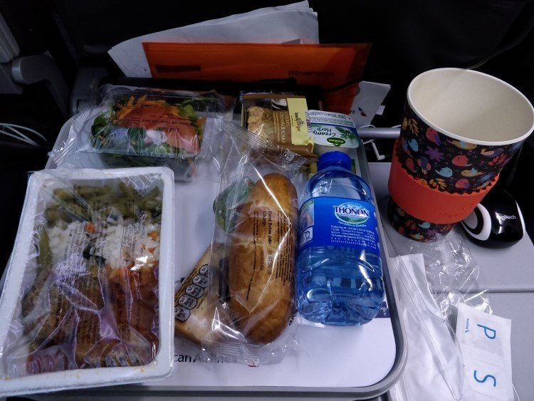 Single-use plastic on a plane to the United States with American Airlines, an obstacle to a plastic free lifestyle.