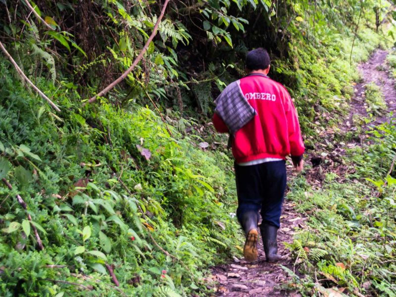 A local guide on a trail to the Yumbilla Falls near Gocta Falls, operated by a community-based tourism initiative that can help travelers be more repsonsible