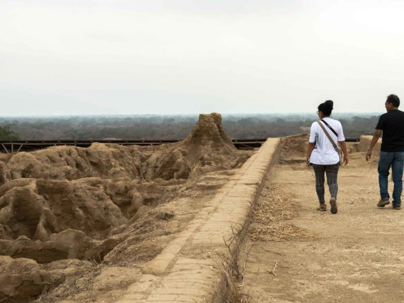 The Huaca de las Ventanas in Batan Grande and the Bosque de Pomac, an archeological site in the north of Peru and an essential place to include when planning a trip to Peru