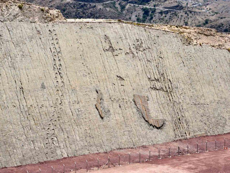 Bolivia Sucre Parque Cretacico Dinosaur Footprints