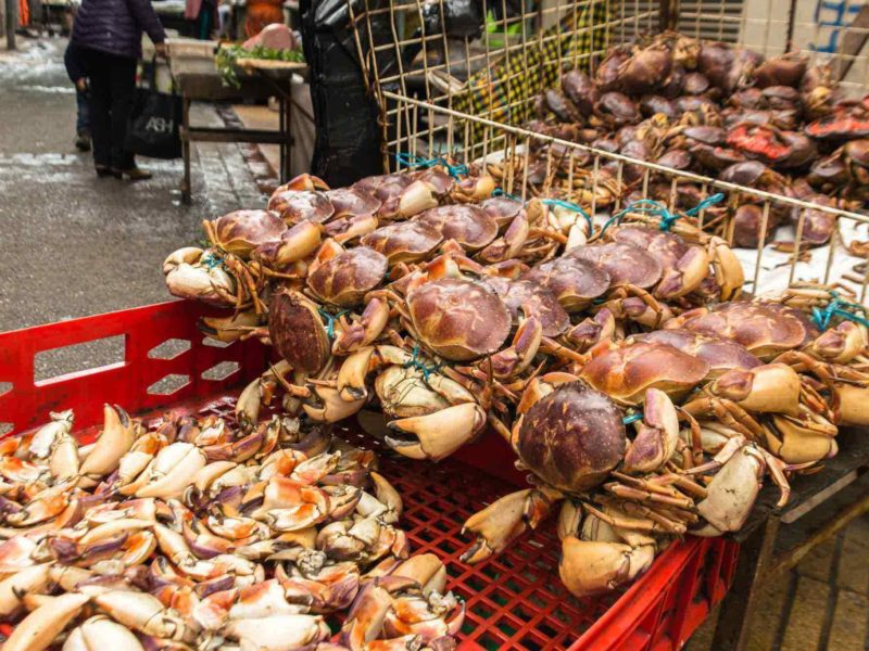 Things to do in Valparaíso Fish Market