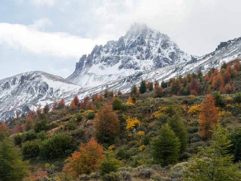Autumn offers some of the best photos when driving in Patagonia
