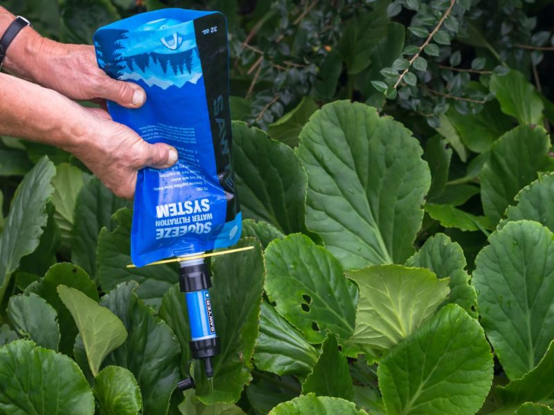 Someone squeezes the blue bag of a Sawyer Mini water filter, pushing the water onto some plants