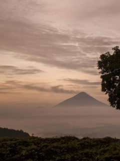 A volcano rises out of the mist in Guatemala