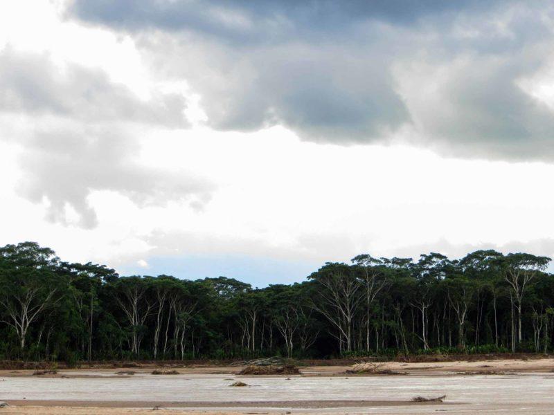 The jungle and a small beach on a river in Parque Amboro in Bolivia